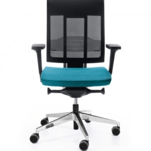 Kėdė xenon net